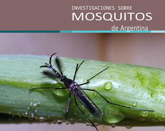 tapa libro mosquitos 1