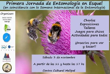 Jornada de entomologia